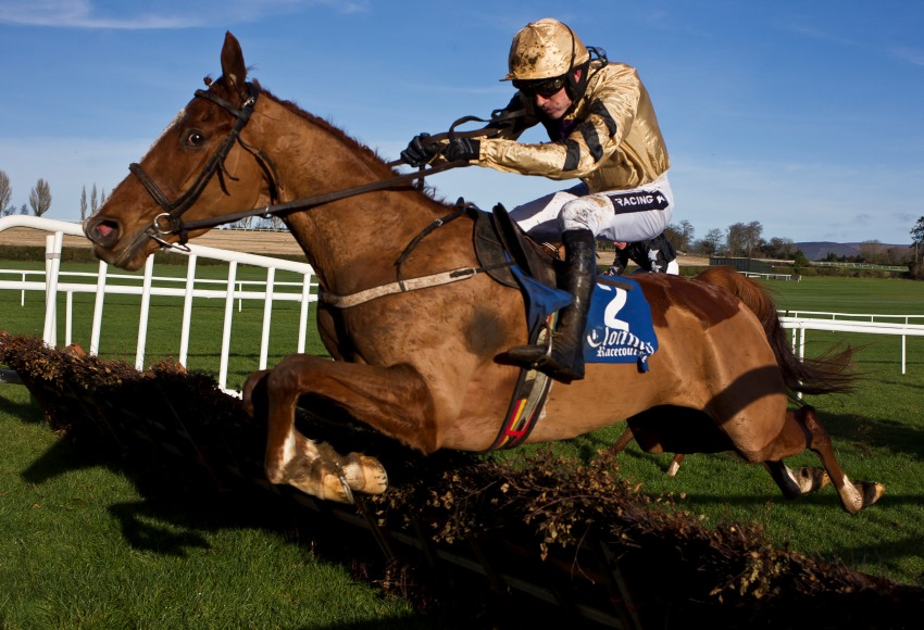 Tolworth Hurdle Betting Line - image 11
