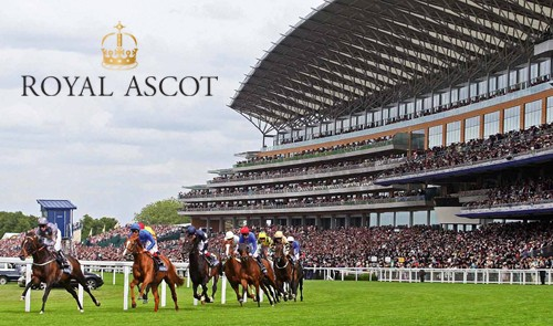 betshare competition - Royal ascot