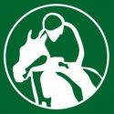 Horse tracker app