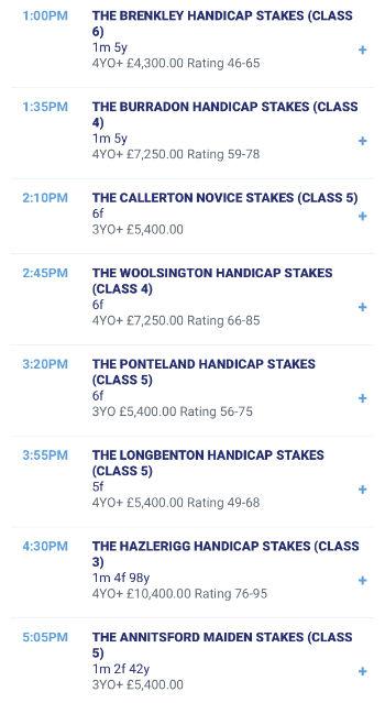 Newcastle races details